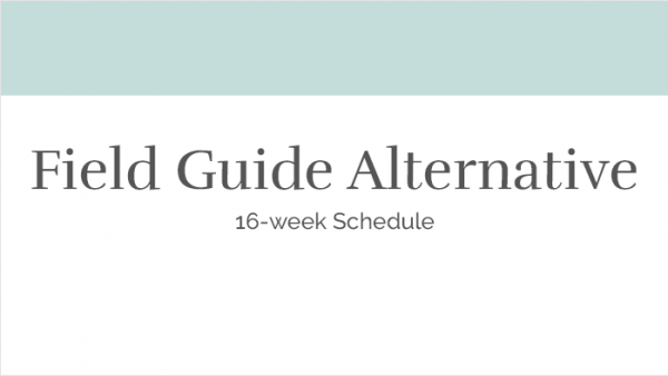 Field Guide Alternative - 16 Week Schedule