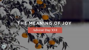 The Meaning of Joy